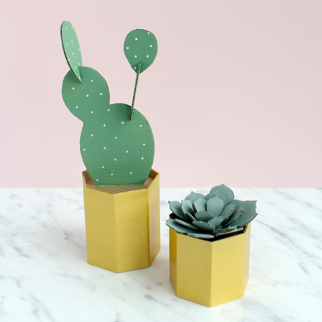 Sarah Louise Matthews 3D Cardboard Cactus and Succulent Pot DIY Project
