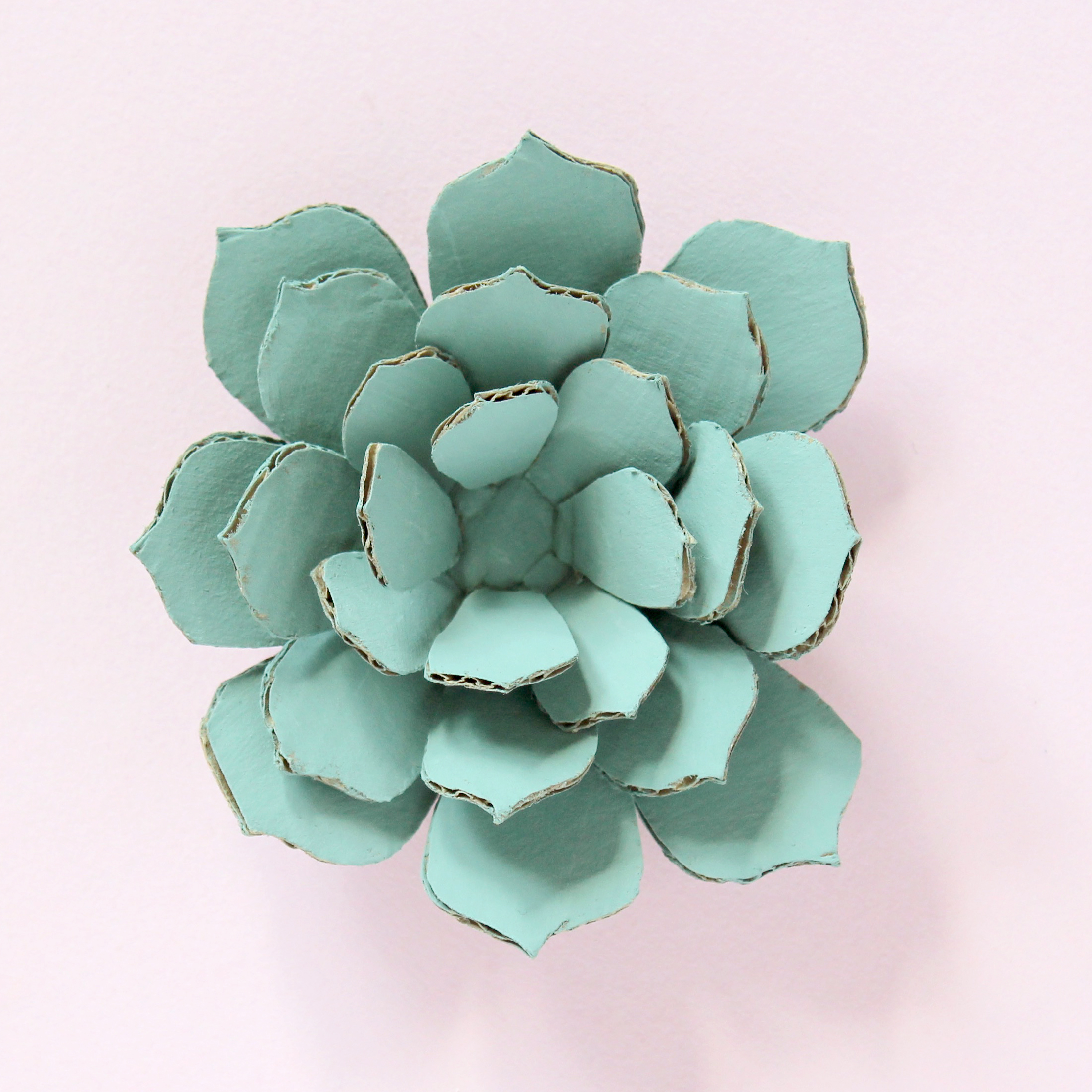 DIY Cardboard Paper Cactus and Succulents